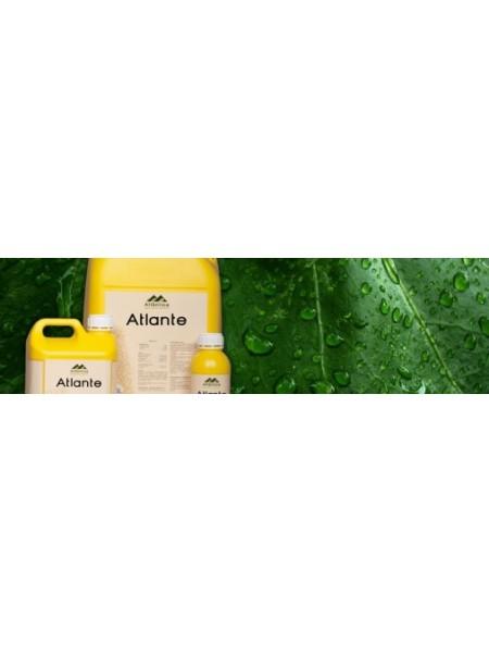 АТЛАНТЕ - жидкое легкодоступное культурам фосфорно-калийное удобрение с фунгицидным действием