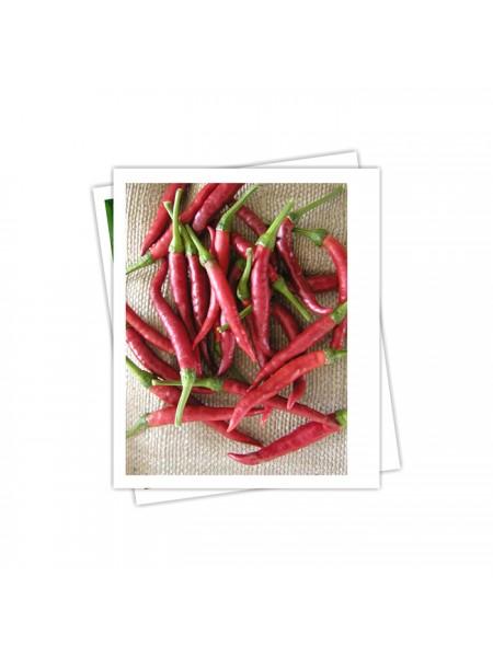 Дамиан - перец горький 100 семян. Семо Чехия