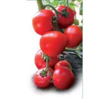 Семена томата полудетерминантного  (средней силы роста)