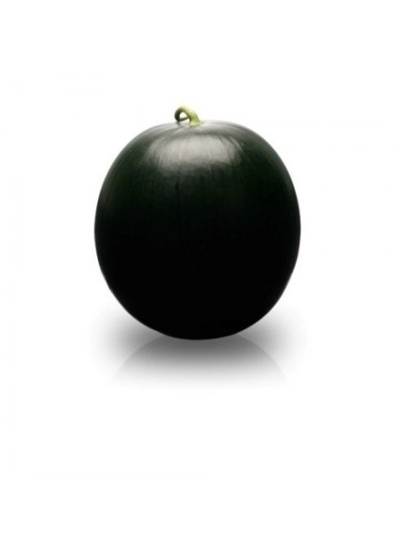 Баронесса F1 - гибрид арбуза, 1000 семян, Rijk Zwaan Голландия