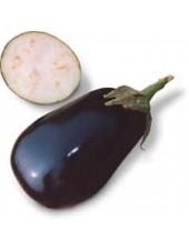 Тиррения F1 - семена баклажана, 1000 семян, Nunhems/Нунемс (Голландия)
