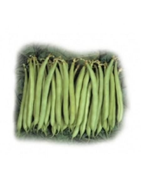 Нагано - фасоль спаржевая, 100 000 семян, Nunhems (Нунемс) Голландия