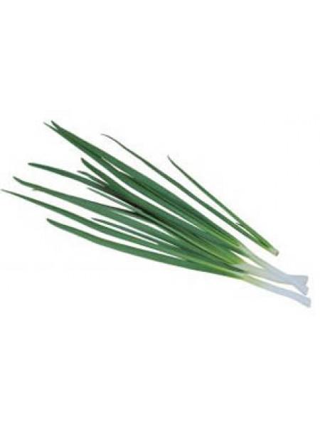 Легионер - лук на зелень, 100 грамм, Гавриш Россия