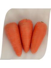 SV 3118 DH F1 - морковь, 1 000 000 семян (1,4-1,6), Seminis (Семинис) Голландия