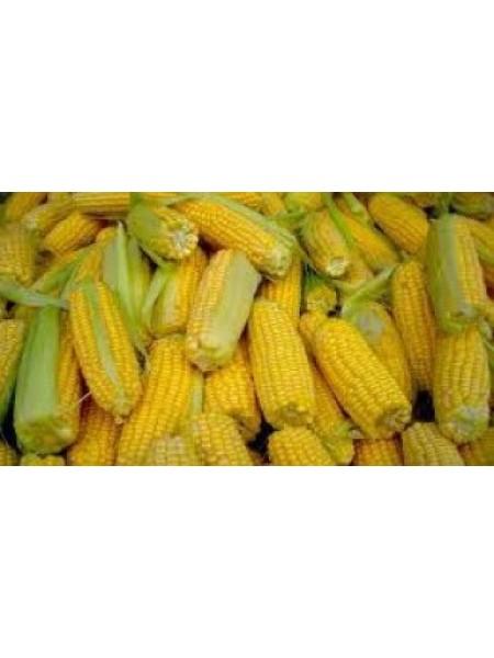 PR38N86 - кукуруза, 80 000 семян, Pioneer (Пионер)