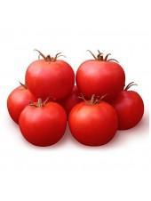 КС 835 F1 - томат детерминантный, 100 семян, KITANO