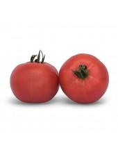 КС 898 F1 - томат детерминантный, 1000 семян, KITANO