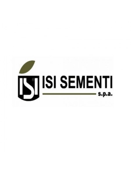Новак F1 (Иси 19061) - томат детерминантный, 1000 семян, Isi Sementi (Иси Сементи), Италия