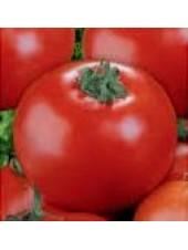 Юранд F1 - томат, 5 гр, детерминантный