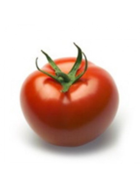Абелус F1 - томат индетерминантный, 1000 семян, Rijk Zwaan Голландия