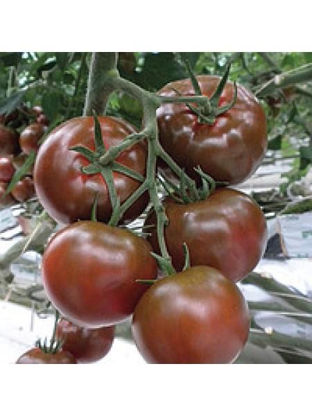 Биг Сашер F1 - томат индетерминантный, 100 семян, Yuksel Seed (Юксел Сид) Турция