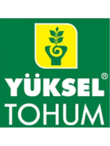 132-111 Сливка F1 - томат индетерминантный, 100 семян, Yuksel Seed (Юксел Сид) Турция