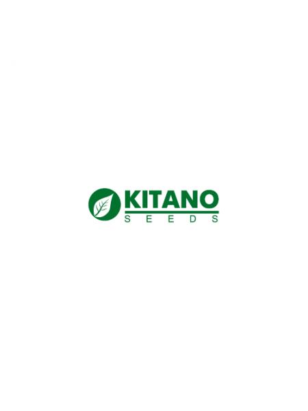 КС 74 F1 - томат полудетерминантный, 1000 семян, KITANO
